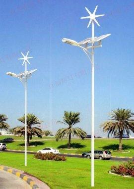 太阳能风电路灯